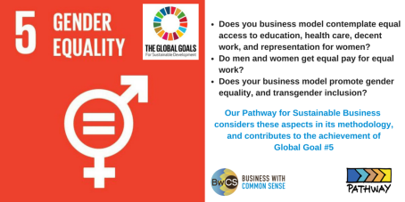 Goal 5 Gender Equality-2